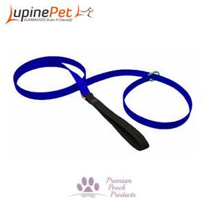 Lupine LARGE Dog Slip Lead 25mm x 1.8m (6ft) Collar & Lead In One - BLUE