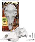 Deer Skull for Mounting Antlers Sportsman Trophy Room Man Cave Decor Hunting NEW