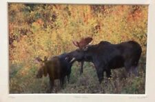 Moose Call Photo Signed Framed & Numbered 30/500 Willie Holdman FoundArtShop.com