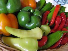 Heirloom Pepper Seed Garden Collection-Organic NonGMO - 4 varieties (200+ seeds)
