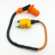 Brand New Ignition Coil For Honda FourTrax300 TRX300 2x4 4x4 1994-2000