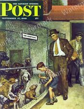Life Magazine Reprint Jack Russell Terrier, Pit Bull and PekingeseDogs