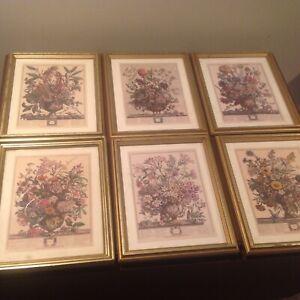(6) Robert Furber Twelve Months of Flowers Print Framed