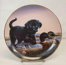"Danbury Mint FINDERS KEEPERS The Sportsmen Black Lab Dog 8""  Plate Philip Crowe"