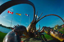 Worlds Largest Lobster Shediac New Brunswick Photo Art Print Poster 18x12