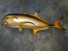 "Cool 36 1/2"" Common Jackfish Saltwater Fish Mount Taxidermy Fishing Lodge Decor"