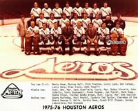 WHA 1975 - 76 Houston Aeros Team Picture Color Gordie Howe 8 X 10 Photo Picture