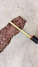 Real Genuine Crocodile Hornback OakColor Strap Skin Leather Hide ฺBelt Gird HTF9