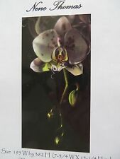 Retired HAED Nene Thomas counted X-stitch chart-QS Orchid Pink Spotted-Reg Fmt