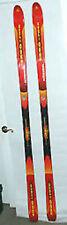 Kneissl Ergo-Race Kneissl Ergo Race Skis 200cm NEW OLD STOCK