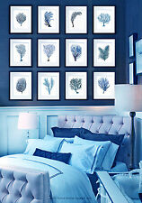Set of 12 Antique Blue Sea Coral Prints Sea Fan Beach House Decor Wall Hanging