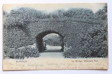 Old UDB postcard IVY BRIDGE, DELAWARE PARK, BUFFALO, N.Y., 1906