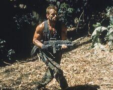 Schwarzenegger, Arnold [Predator] (41927) 8x10 Photo