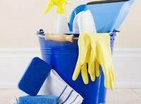 Website For Cleaners Offering Professional Cleaning Services Home Or Office 99p