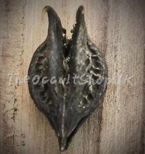 DEVIL CLAW BAT HEAD TALISMAN WITCH SPELLS MAGIKAL POTION MOJO WICCA PAGAN VOODOO