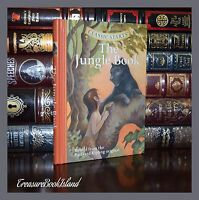 The Jungle Book by Rudyard Kipling Illustrated by Corvino Gift Hardcover Edition