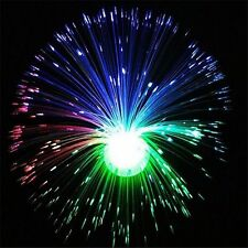 Baby Toys Color Changing LED Fiber Optic Night Light Flower Lamp Home Decor New