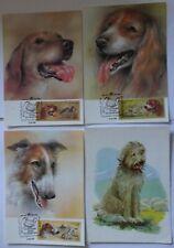 4 postcards (3 cartmaximum) the USSR of a dog .1972, 1987.