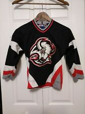 Buffalo Sabres Vintage NHL CCM Hockey Jersey Youth S/M Old Logo