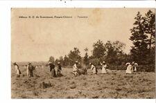 CPA-Carte Postale-Belgique Chimay-Abbaye de Scourmont-Fenaison--VM21692dg