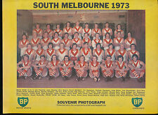 1973 BP Football Life Team Photo South Melbourne Swans Souvenir Photograph