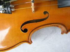 schöne alte Geige Meistergeige Werner Barth Bad Brambach 1981 von Berufsmusiker