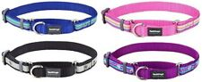 Red Dingo Quality Martingale Dog Collar Hard-Wearing Half Check Collar for Dogs