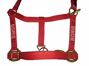 Personalised Embroidered Headcollars with Horse Shoe Motifs All Sizes From £9.90
