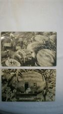 LOT OF 2 RPPC BLACK AMERICANA:A UNIQUE BUNGALOW &CARVING WATERMELON EXAGGERATION