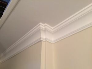 Small Ornate Plaster Coving £6 Per M Cheapest On eBay Top Quality