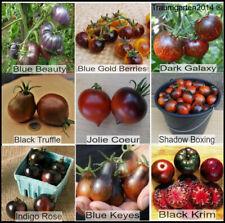 Tomatensamen Dunkle/Schwarze Tomatensorten Saatgut 9 seltene Sorten Rarität