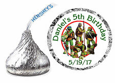 216 ~ NINJA TURTLE BIRTHDAY PARTY FAVORS HERSHEY KISS KISSES LABELS