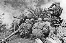 WWII B&W Photo German Anti Tank Gun and Crew In Action World War Two / 2296