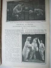 1901 CIRCUS Animals trainer HAGENBECK Heliot Sawade Judge ~ magazine article in