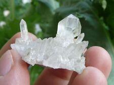 SZEPTERQUARZ Kristall Stufe (Star Claim, USA) Scepter Quartz Specimen #d