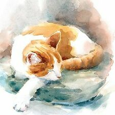 Note Card - 5 x Notelets - Ginger Cat - Ling Design Thank You Quality NEW