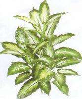 """40"""" SILK DIEFF PLANT BUSH ARTIFICIAL PALM DECOR TREE ARRANGEMENT FLOWER FLORAL"""
