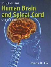 Atlas Of The Human Brain And Spinal Cord by Fix, James
