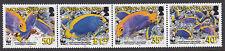 ASCENSION ISLAND:2006 Endangered Species-Anglefish/WWF  set  SG962-5 MNH