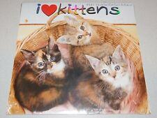 I Love Kittens Wall Calendar 2021 - New Sealed - 12 Months