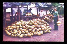 Food Fruit postcard Coconuts Sonsonate El Salvador C.A.
