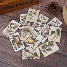 12pcs retro plant English illustrated vintage ferns diy scrapbook album stickerJ