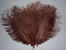 lot de 5 plumes autruche chocolat 20 cm