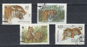 set of 4 used Tiger themed stamps from Russia