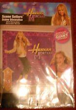 Hannah Montana Scene Setter Room Decorating Kit
