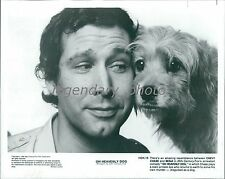 1980 Chevy Chase with Benji in Oh Heavenly Dog Original News Service Photo