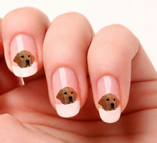 20 Adesivi Unghie Nail Art Decalcomanie #588 - Labrador Just peeling & stick