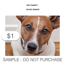 $1 Charitable Donation For: Sample GTC Listing [DO NOT PURCHASE]