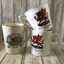 Set Of 3 Welsh Prince Charles 1969 Investiture Commemorative Mugs Paragon China