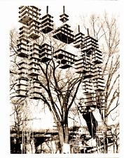 U.S.A., Special bird housing  Vintage , Jerome Verhasselt  Tirage argentique